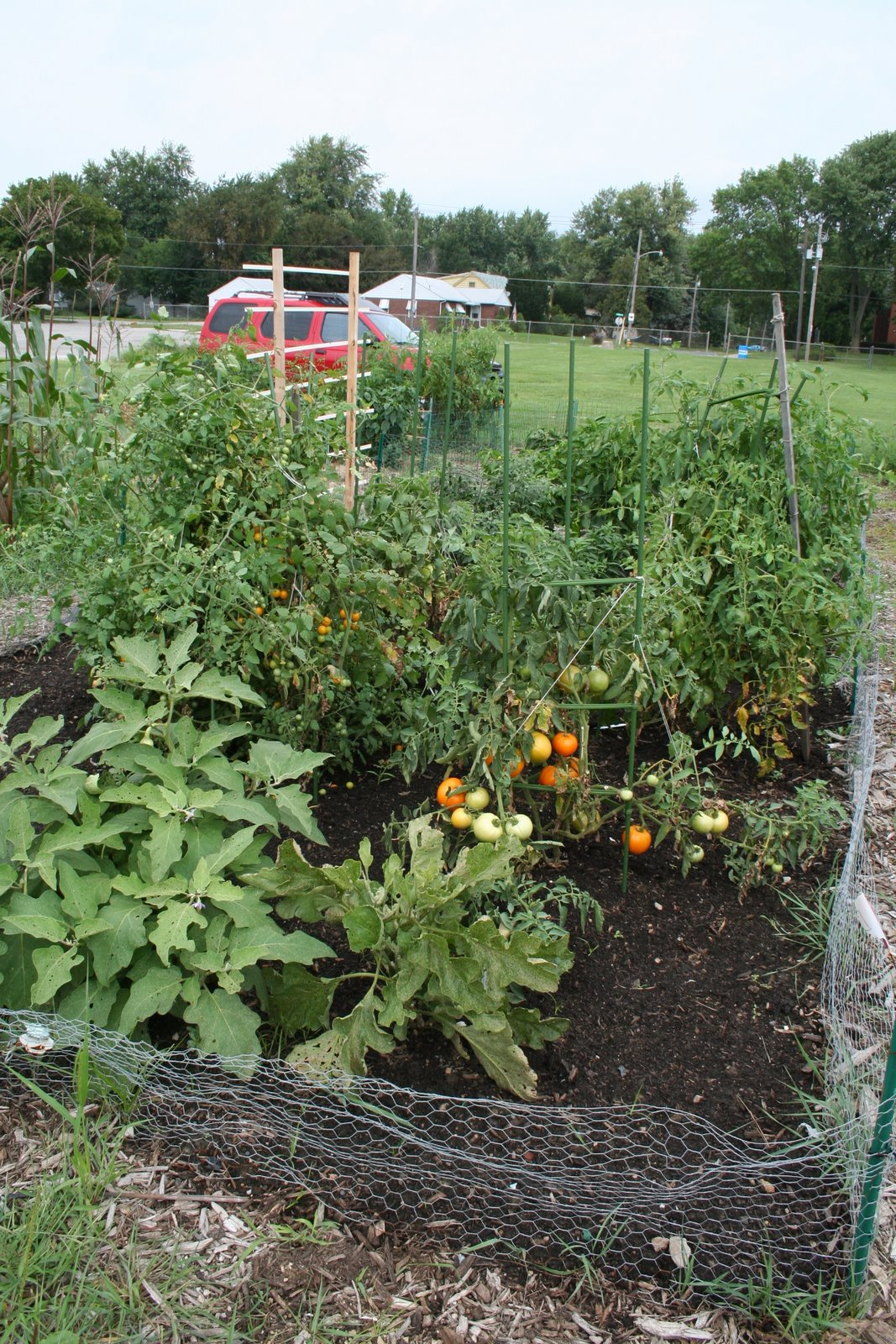 Local Foods Movement, Part 1, Franklin Community Garden
