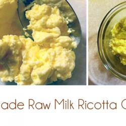 homemade raw milk ricotta cheese