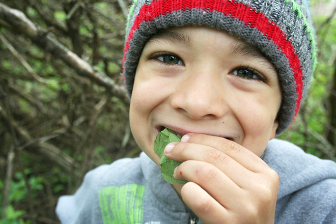Foraging Outdoors with Children