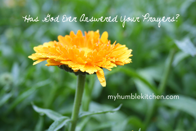Has God Ever Answered Your Prayers? | myhumblekitchen.com