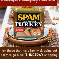 A Beautiful Thanksgiving Feast Idea... for those that have families skipping out early to go black THURSDAY shopping! | myhumblekitchen.com