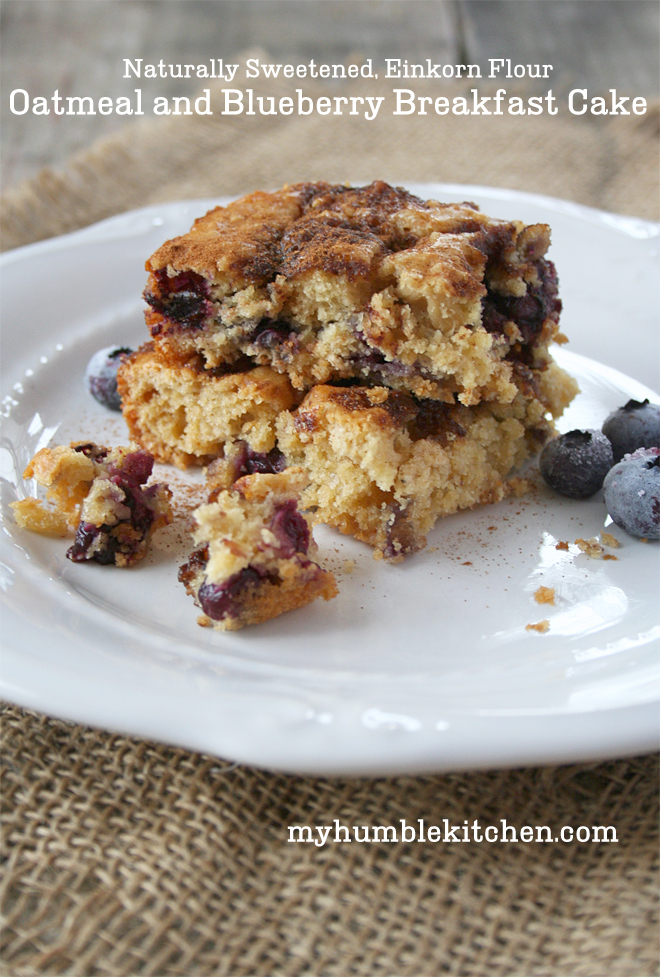 blueberry oatmeal cake recipes dishmaps blueberry baked oatmeal mug ...