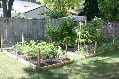 Organic Gardening 101 - How to Start an Organic Vegetable Garden | myhumblekitchen.com