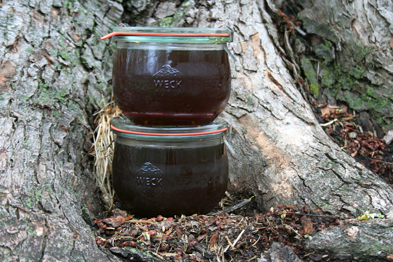 Sugarin' In The City - Making Maple Syrup at Home | myhumblekitchen.com