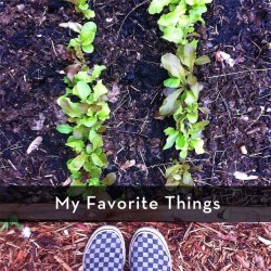 My Favorite Things | myhumblekitchen.com