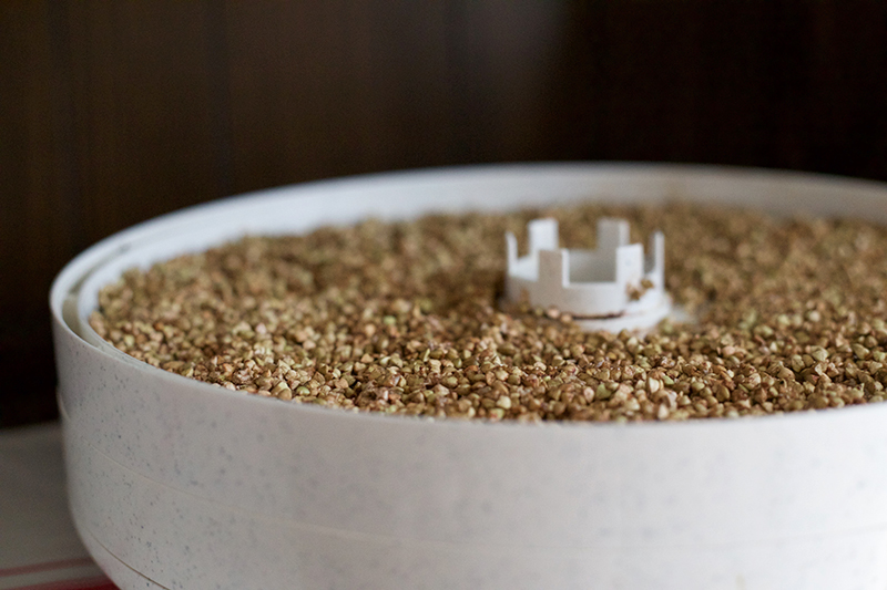 Fermented Buckwheat Crunch - Gluten Free | myhumblekitchen.com